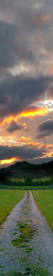 SunsetTall